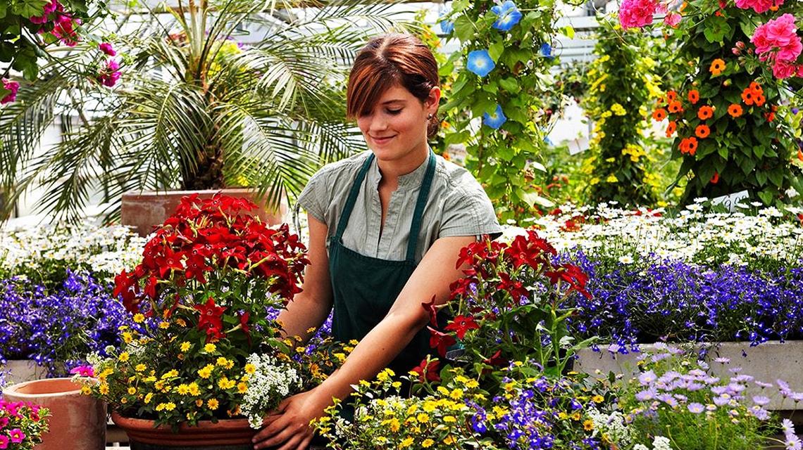 Projets de jardinage