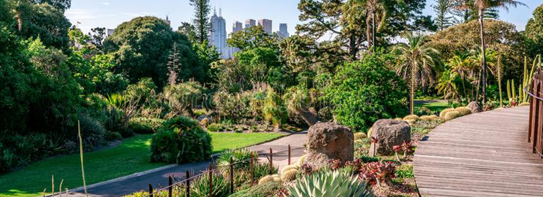 un petit jardin de ville