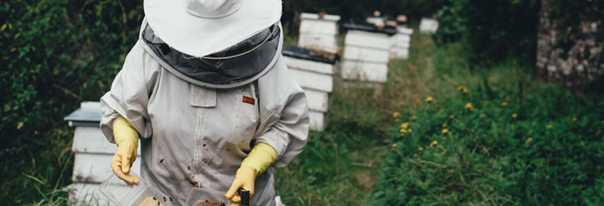 tenue apiculteur